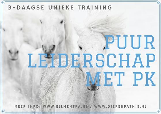 aankondiging puur leiderschap